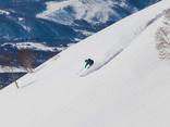 Didier & Travelhouse Snow der Finder
