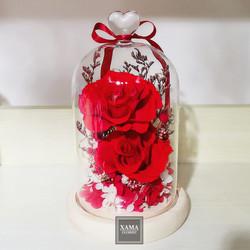 XN06 紅+紅玫瑰