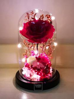 Led 桃紅玫瑰保鮮花