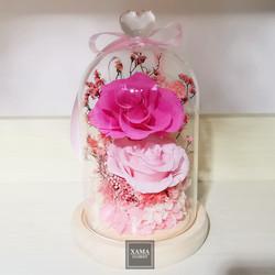 XN05 深粉+淺粉玫瑰