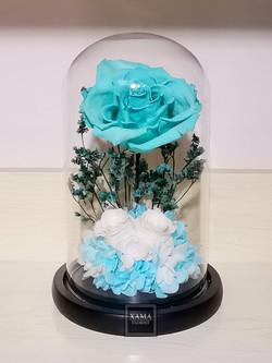 薄荷綠玫瑰保鮮花