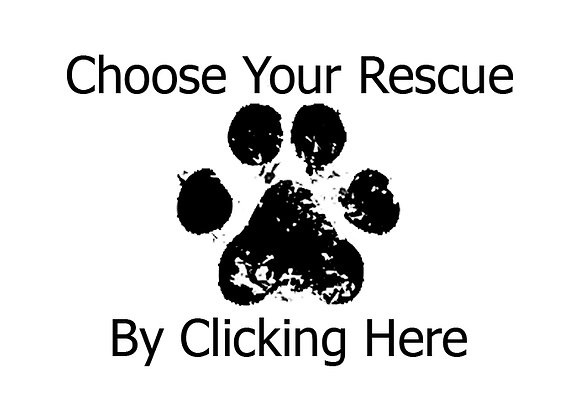 Select Your Rescue