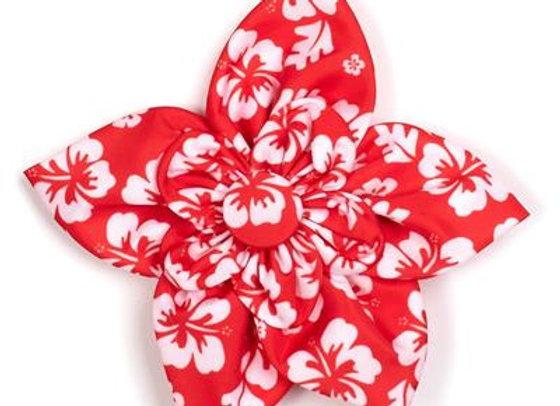 Aloha Flower