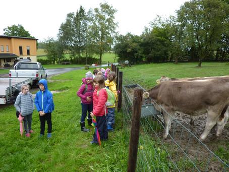 Die Klasse 3 besucht die Monzelfelder Mühle