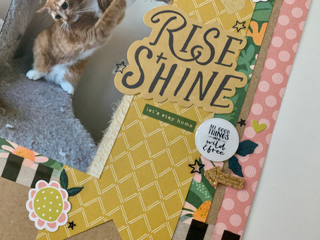 Rise & Shine - 12x12 Cat Layout Process | Using Crate Paper Magical Forest