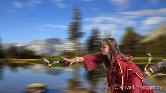 Quidditch Composite