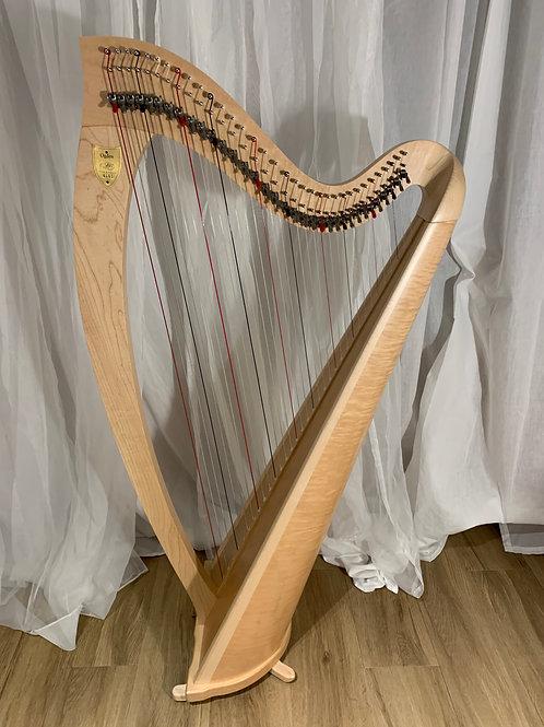 L&H Ogden 34 strings & Bag Set