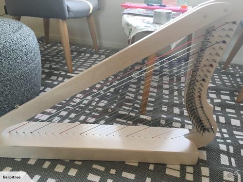 Electro-Acoustic Fullsicle-Harp White Premium Package   harpitree