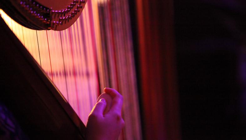 오케스트라 공연중 - 가끔 '펠트'와 같은 도구를 이용하여 치기도 한다. Photo Credit to Neil Shepherd.jpg