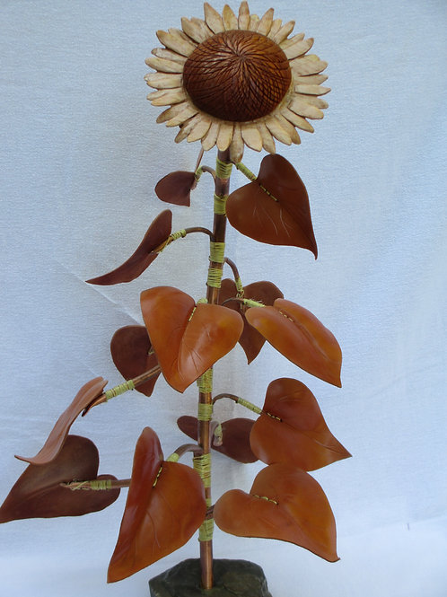 Sunflower - Titled Possibilities