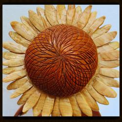 Sunflower 1-5_edited_edited