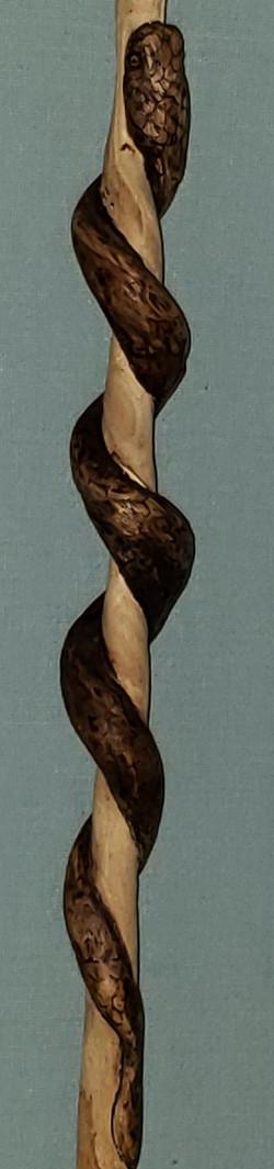 Garter Snake - Interpretive