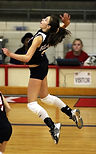 volleyball-1531786_1920.jpg
