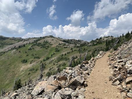 Day 73 - back to ridge walking (34.8 miles)