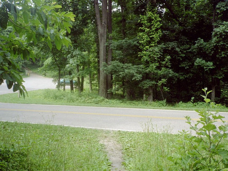 Day 47: Pass Mountain Hut to Jim & Molly Denton Shelter (31.7 miles)