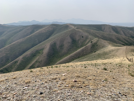 Day 75 - lots of up and downs on the ridge (22.0 miles)