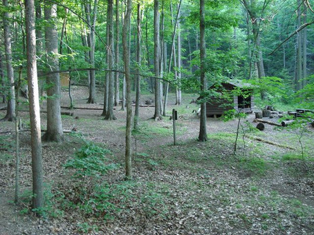 Day 39: Thunder Hill Shelter to Johns Hollow Shelter (16.3 miles)