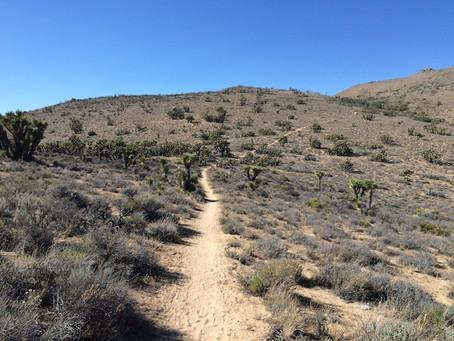 Day 28: Robin Bird Spring to CS635 (33.2 miles - 635.3)