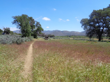 Day 2: Hauser Creek to Fred Canyon (16.6 miles)
