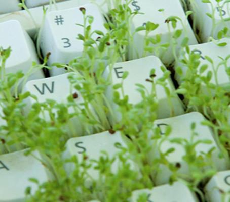 115 bonnes pratiques d'écoconception Web : découvrez le livre de GreenIT