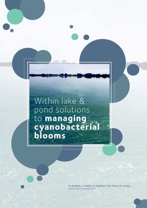 AUS Rivers Report Design