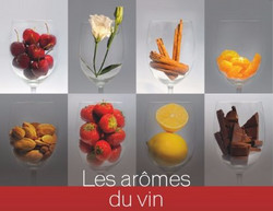 les-arômes-du-vin-a-la-sauternaise_edited_edited
