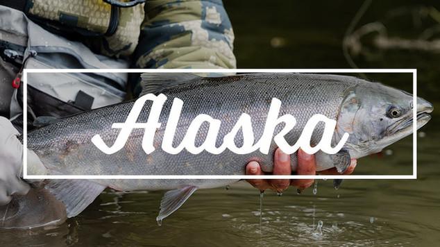 Scenic Remote Lodging for Silver Salmon | Alaska