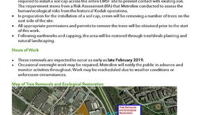 Tree Removal at Eglinton Maintenance and Storage Facility Site (EMSF)