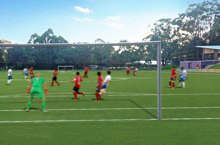 Synthetic Pitch approved for Norman Griffiths Oval