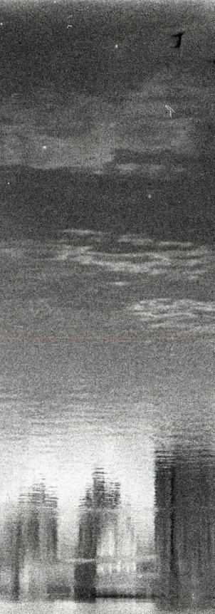 bw010.jpg