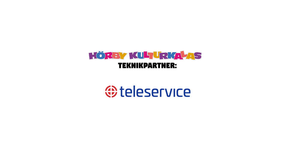 teknikpartner Teleservice