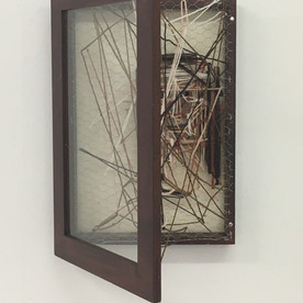 display case, 2017