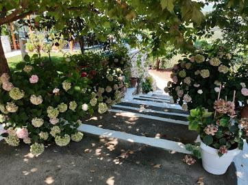 Villa Hortensia Sparto garden.JPG