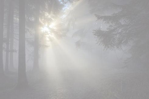 sunbeam-1547273_1920_edited_edited.jpg
