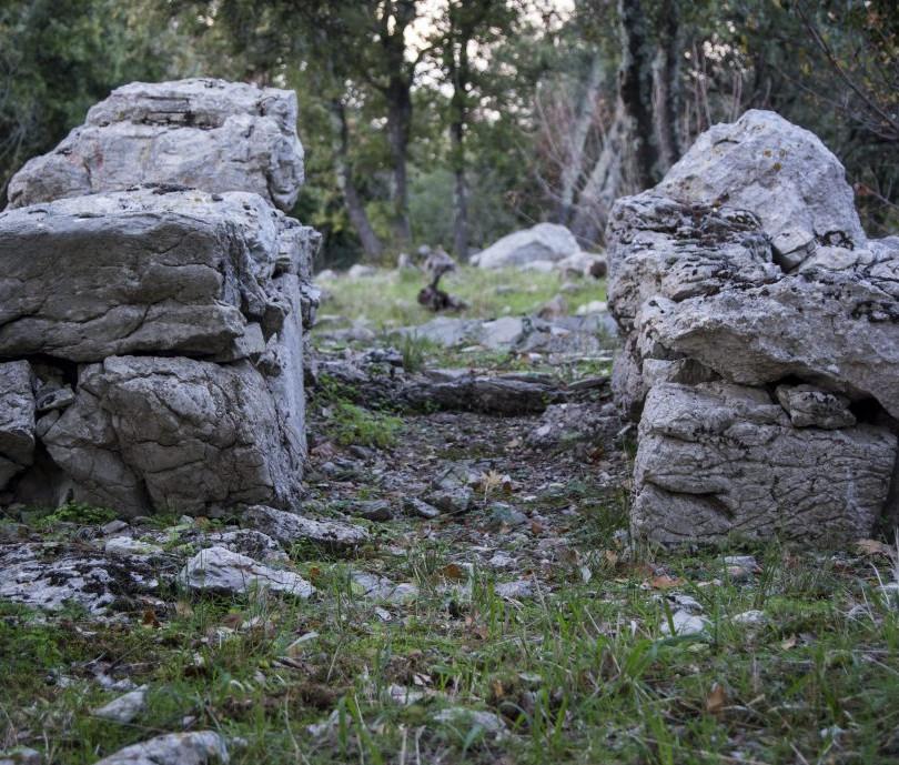 prehistoire cambous.jpg