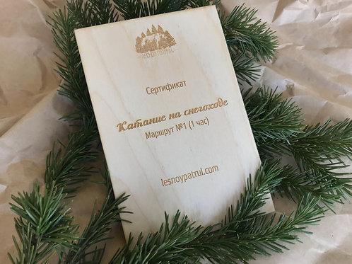 Сертификат. Катание на снегоходе. Маршрут №1 (1 час)