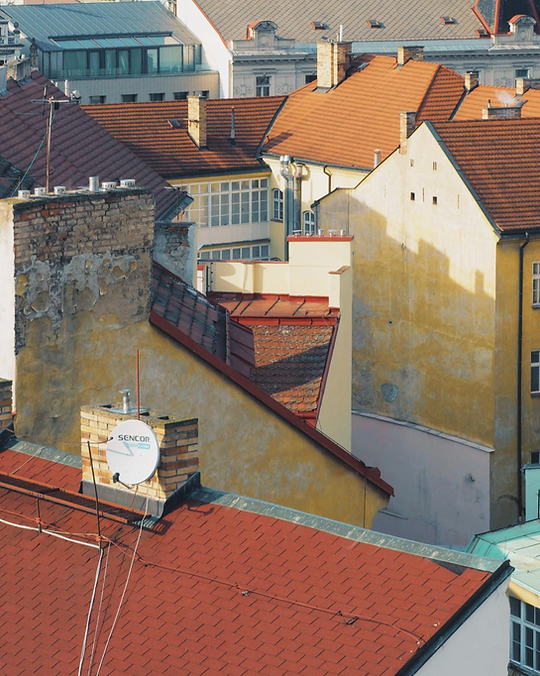 Polina-Shubkina-Prague-Roofs-Photos-022.