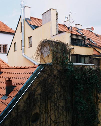 Polina-Shubkina-Prague-Roofs-Photos-023.