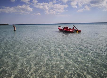 Lecce Covid Free da 45gg