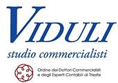 Logo Viduli.png
