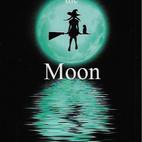 Shadow the Moon