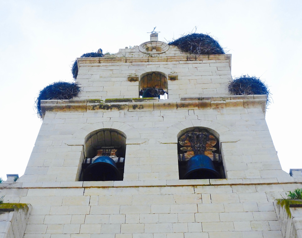 Old Church facade with pelican nests nestled atop