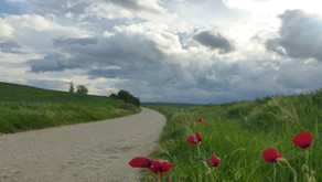 Camino De Santiago Day 5: Where the wind crosses the way of the Stars