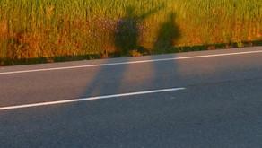 Camino Day 20: Sunrise Shadows