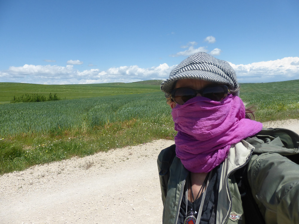 Windy day on the Camino