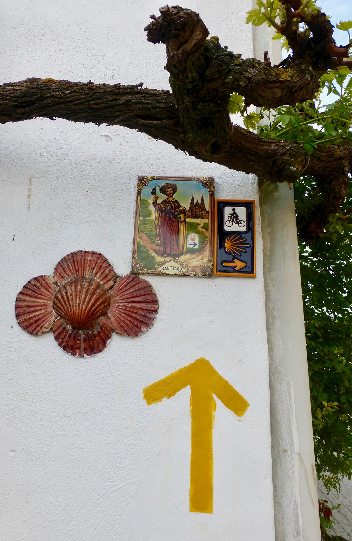 trail Camino de Santiago shell