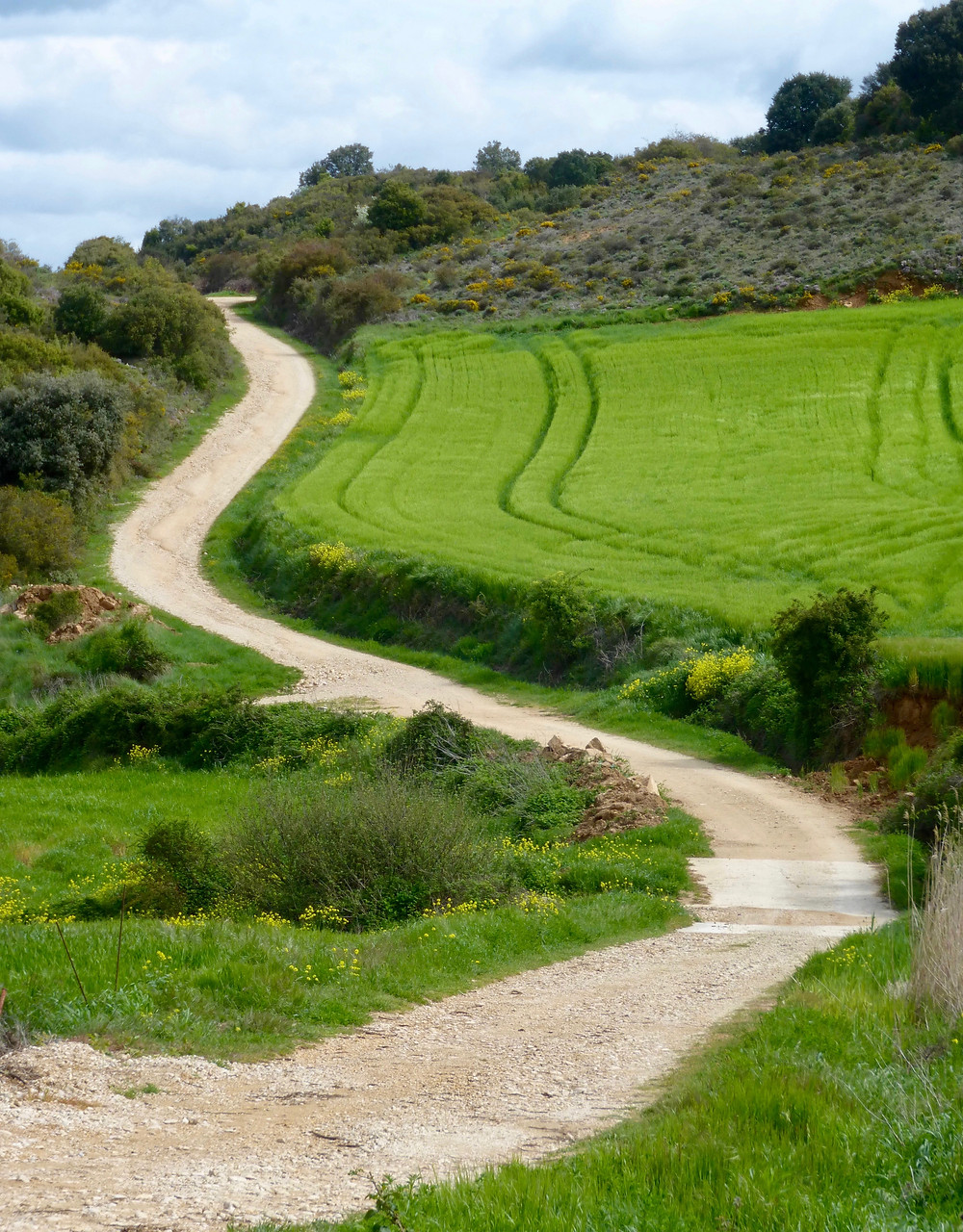 Camino De Santiago High Road