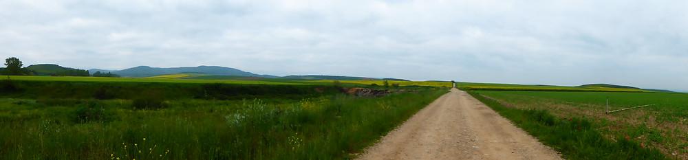 Long stretch of fields of grass on Camino de Santiago