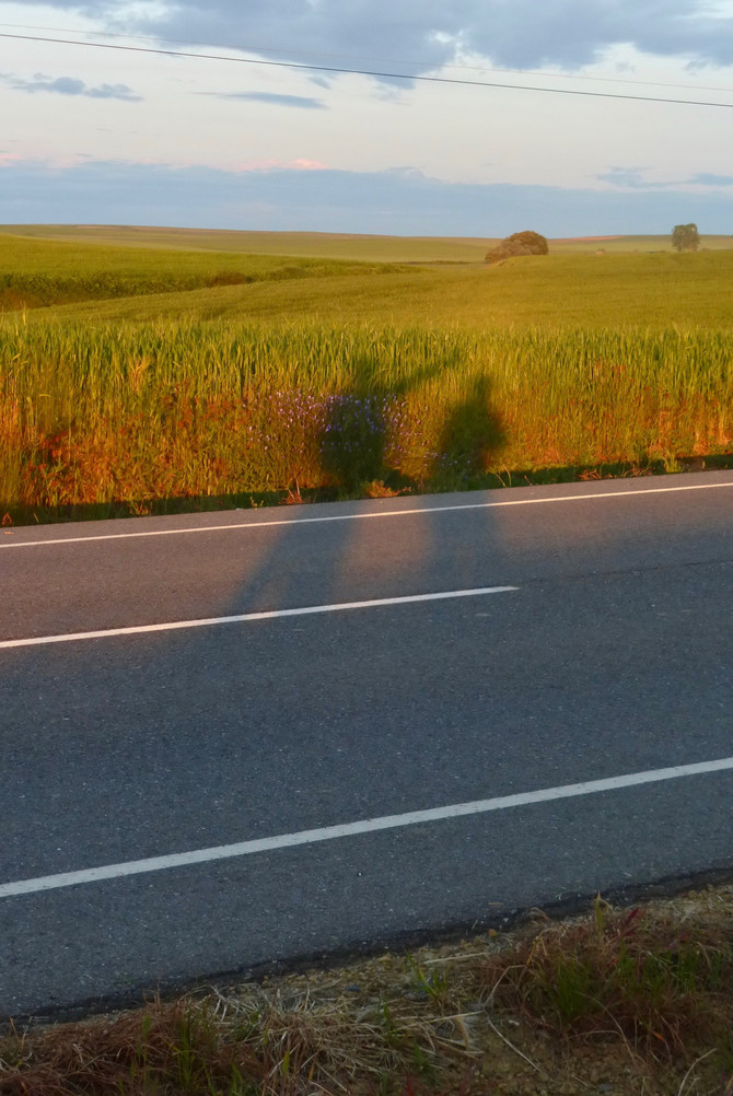 Camino Day 20: Sunrise Shadows