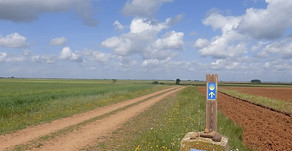 To walk or not to walk the Camino de Santiago?
